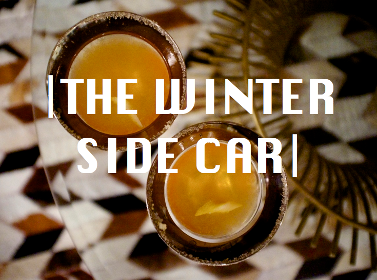winter side car
