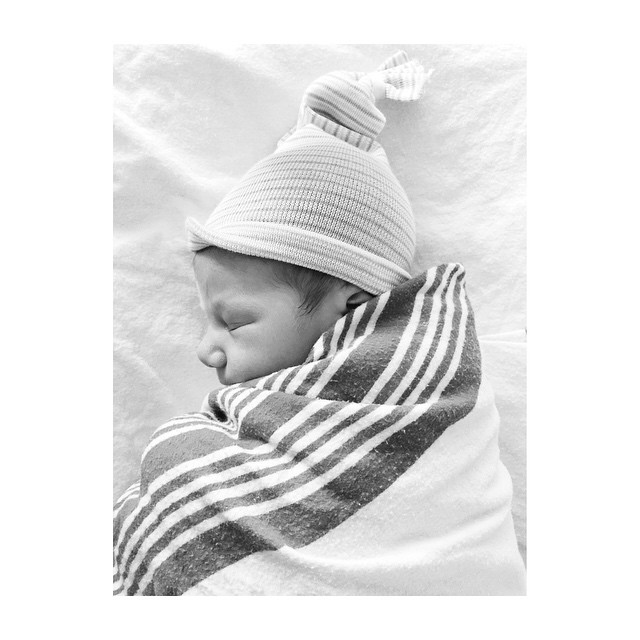 Welcome to the world little bunny rabbit. My new little…